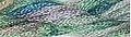 Caron Collection Waterlilies Silk Floss - 107 - Spruce