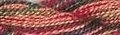 Caron Collection Waterlilies Silk Floss - 120 - Forest Fire